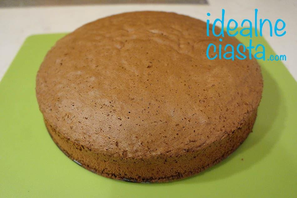 czekoladowy biszkopt